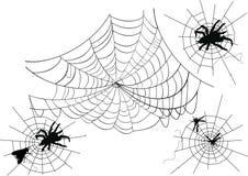 Quattro Web di ragno Fotografie Stock