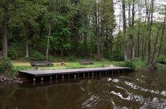 Quay blisko rzeki otaczającej drzewami Obraz Stock