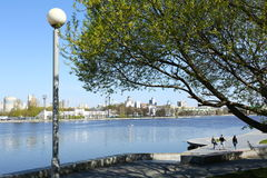 Quay d'étang de ville Images stock