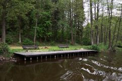 A quay near a river surrounded by trees. Stock Image