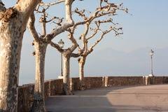 Quay next to castello scaligero. Quay with stone wall and trees next to castello scaligero Stock Photos