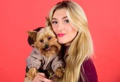 Que raças do cão devem vestir revestimentos Vestindo o cão para o tempo frio Certifique-se que o cão sente confortável na roupa a fotos de stock royalty free