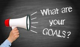 Que são seus objetivos? Imagens de Stock
