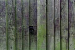 Que ` s atrás da cerca de madeira? foto de stock
