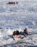 Quebec Carnival: Ice Canoe Race Royalty Free Stock Photo