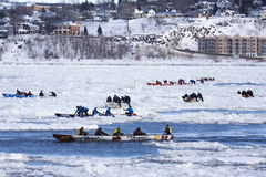 Quebec Carnival: Ice Canoe Race Royalty Free Stock Images