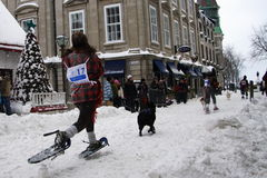 Quebec Carnival: Snowshoeing Race. Stock Photo