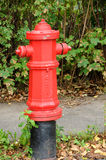 Quebec, a fire hydrant in Levis Royalty Free Stock Image