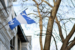 Quebec flag in Montreal billowing in the breeze Stock Image