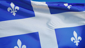 Quebec flag in slow motion seamlessly looped with alpha