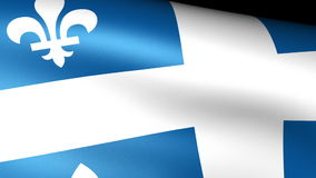 Quebec Flag Waving. Video footage stock video