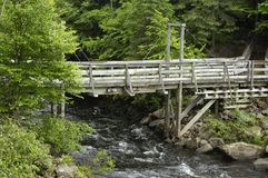 Quebec, a footbridge in a forest Royalty Free Stock Images