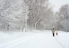 Quebec zima Obraz Royalty Free