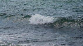 Quebra das ondas do mar video estoque