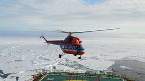 Quebra-gelo que atravessa os campos de gelo, árticos video estoque