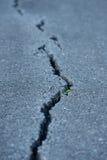 Quebra longa na estrada Foto de Stock