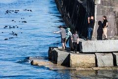 Quebra-mar do ponto de Ogden Imagens de Stock Royalty Free