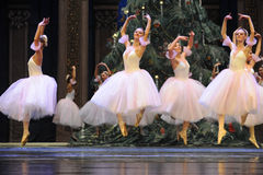 Quebra-nozes de salto- do bailado da menina do bailado Imagens de Stock Royalty Free