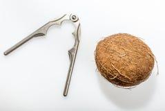Quebra-nozes usada para tentar em vão quebrar um coco Fotografia de Stock Royalty Free