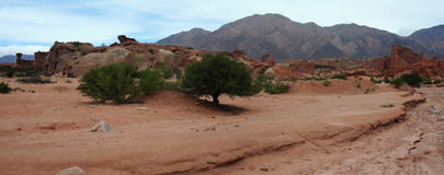 Quebrada de Cafayate National park at  Calchaquies. Valley on argntina andes Royalty Free Stock Images