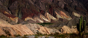 Quebrada de Humahuaca Стоковая Фотография