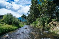 Quebrada-La Esperanza - Oxapampa Stockbild