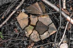 Quebrado em partes de tijolo entre os ramos e os carvões imagens de stock
