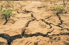 Quebras à terra Foto de Stock