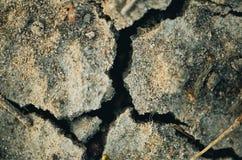 Quebras na areia Imagens de Stock