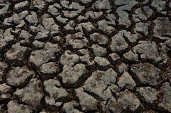 Quebras na terra seca em um prado Fotos de Stock