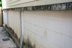 Quebras nas paredes mofados Foto de Stock