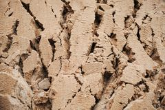 Quebras profundas do fundo na areia molhada fotos de stock royalty free