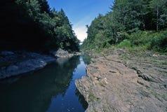 Quechee Fluss-Schlucht Stockbild