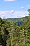 Quechee klyfta, Quechee by, stad av Hartford, Windsor County, Vermont, Förenta staterna royaltyfria foton