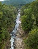 Quechee klyftadelstatspark arkivfoto