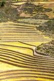 Quechua Stock Photos