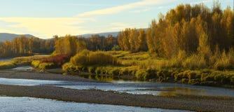 Queda ao longo de South Fork do rio Snake Fotografia de Stock Royalty Free