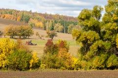 A queda arou o campo, uma grama de sega da grande ceifeira da árvore de salgueiro Imagens de Stock Royalty Free
