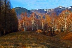 Queda atrasada ou trajeto adiantado do inverno às montanhas fotos de stock