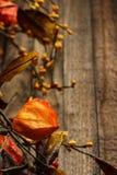 Queda Autumn Background Fotografia de Stock Royalty Free