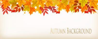 Queda Autumn Colorful Leaves Background do panorama ilustração royalty free