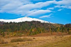 Queda bonita em montanhas Carpathian Imagem de Stock Royalty Free