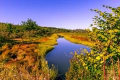 A queda colore Castine Maine Imagem de Stock