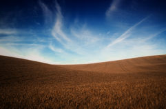 A queda colore a grama e o céu azul fotos de stock royalty free