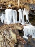 Queda congelada Fotos de Stock