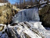 Queda congelada ramo de queda da água Fotografia de Stock Royalty Free
