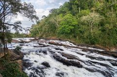 Queda da água de Athirappilly Fotografia de Stock Royalty Free
