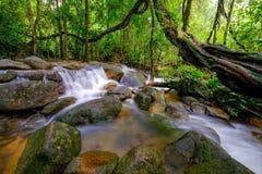 Queda da água de Tailândia Fotografia de Stock