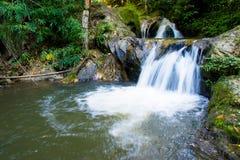 Queda da água do Mea wong no chiangmai, Tailândia Imagens de Stock Royalty Free