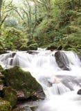 Queda da água do rio Imagens de Stock